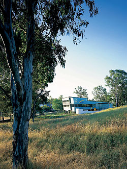 Overview of the Brisbane Veterinary Specialist Centre, seen across the neighbouring park. Image: Scott Burrows