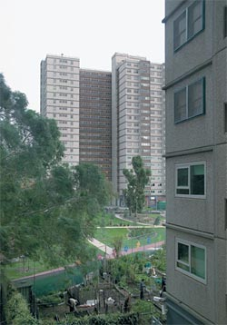 Atherton Gardens Estate, Fitzroy, 1968–1972, by Housing Commission Victoria. Image: Eric Sierins, 2006.